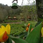bungalow_ekodanitap_kackar_mountain_10