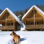 bungalow_ekodanitap_kackar_mountain_13