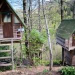 tree_house_ekodanitap_kackar_mountain_6