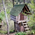 tree_house_ekodanitap_kackar_mountain_7